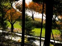 2012_11_labarge-17